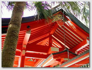 青島神社−ビローと門