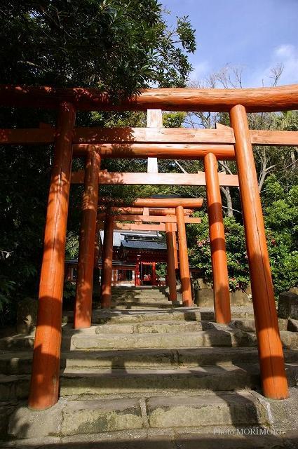 鵜戸神宮末社 稲荷神社 03