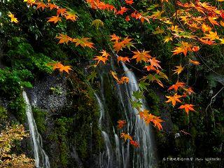 玉垂れの滝と紅葉
