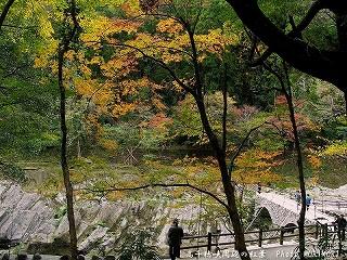 高千穂峡の紅葉|槍飛橋付近02