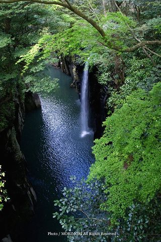 高千穂峡の新緑 2010年撮影 05 御橋上より 真名井の滝