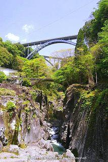高千穂峡の新緑 04