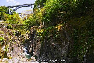 高千穂峡の新緑 05